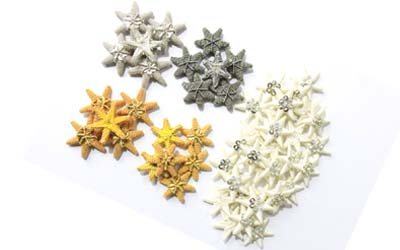 Bullion Stars Badges