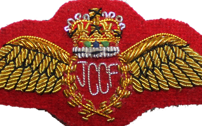 Bullion Embroidered Military Uniform Wing Badges